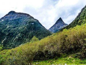 Mackinnon Pass from Arthur Valley