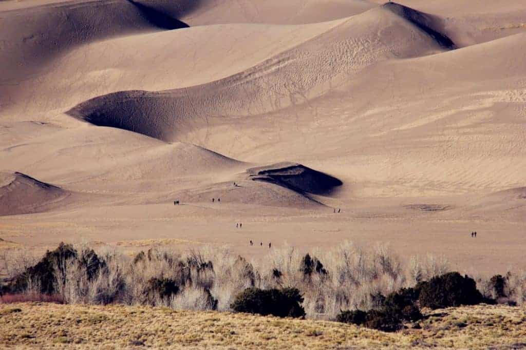 Dunefield camping - Great Sand Dunes