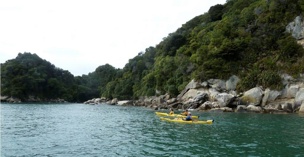 Kayakers in Abel Tasman National Park
