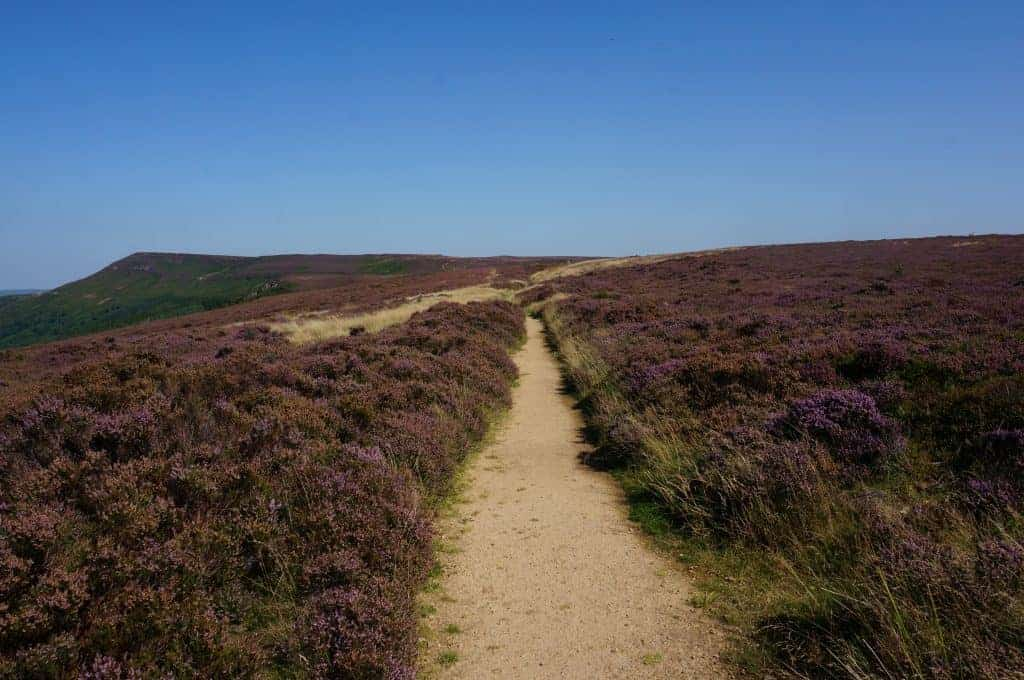 North York Moors Stage 12 Coast to Coast Walk
