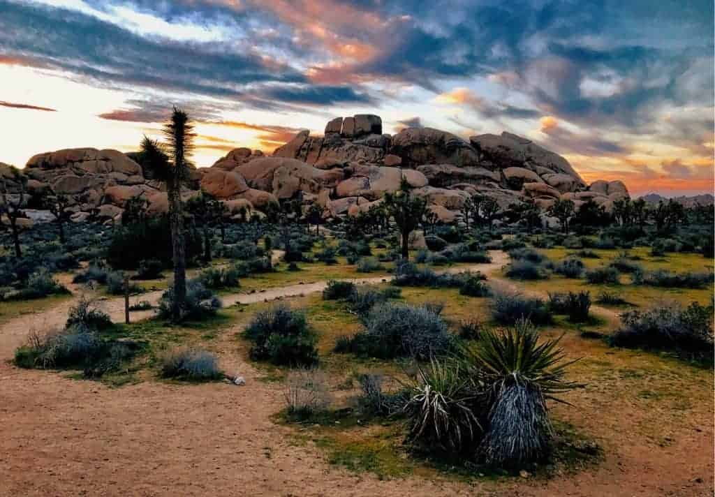 Backcountry camping in Joshua Tree National Park