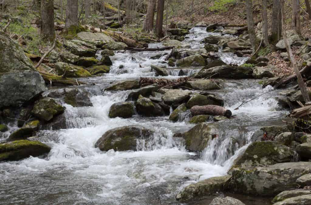 River in the Shenandoah backcountry