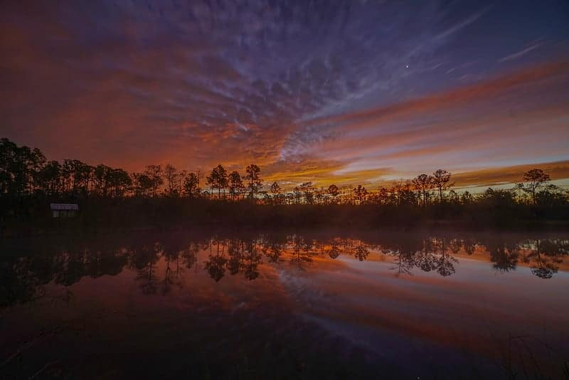Sunset in Big Cypress National Preserve
