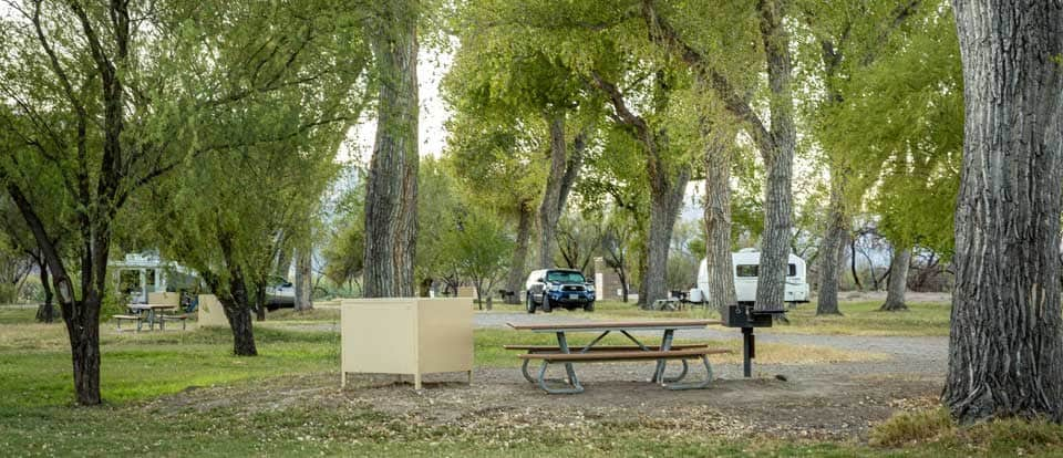 Picnic table at the Cottonwood Campground