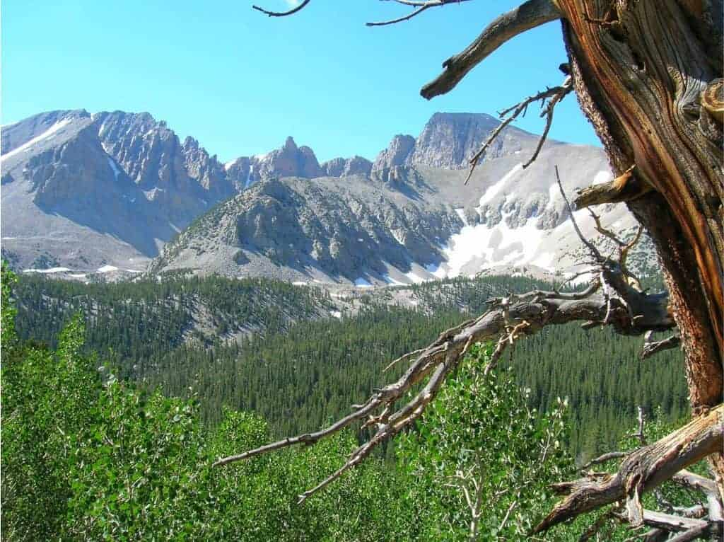 View of Wheeler Peak from the Great Basin Backcountry.