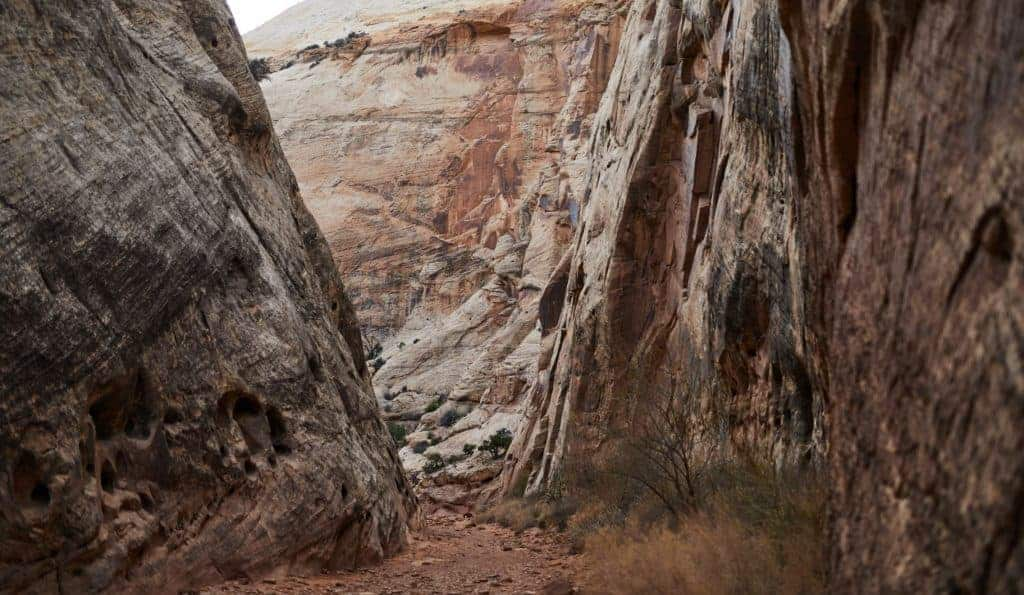 A backpacking trail in Capitol Reef National Park