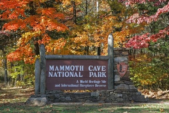 Autumn colors in Mammoth Cave National Park.