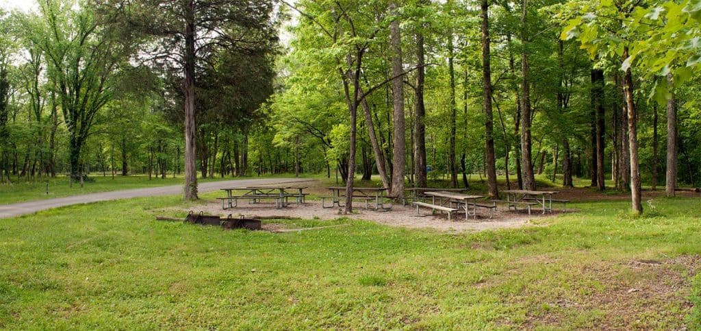 Picnic tables at the Maple Springs Campground in Mammoth Cave National Park
