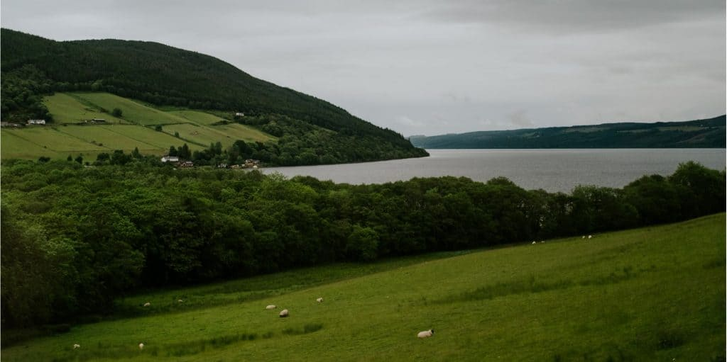 Green hillside above Loch Ness