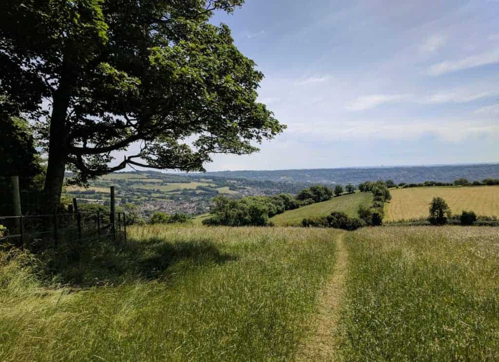 Path on the Cotswold Way