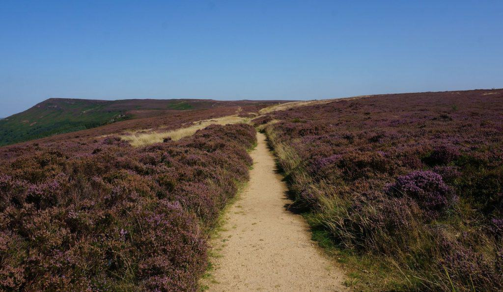 Trail in the North York Moors