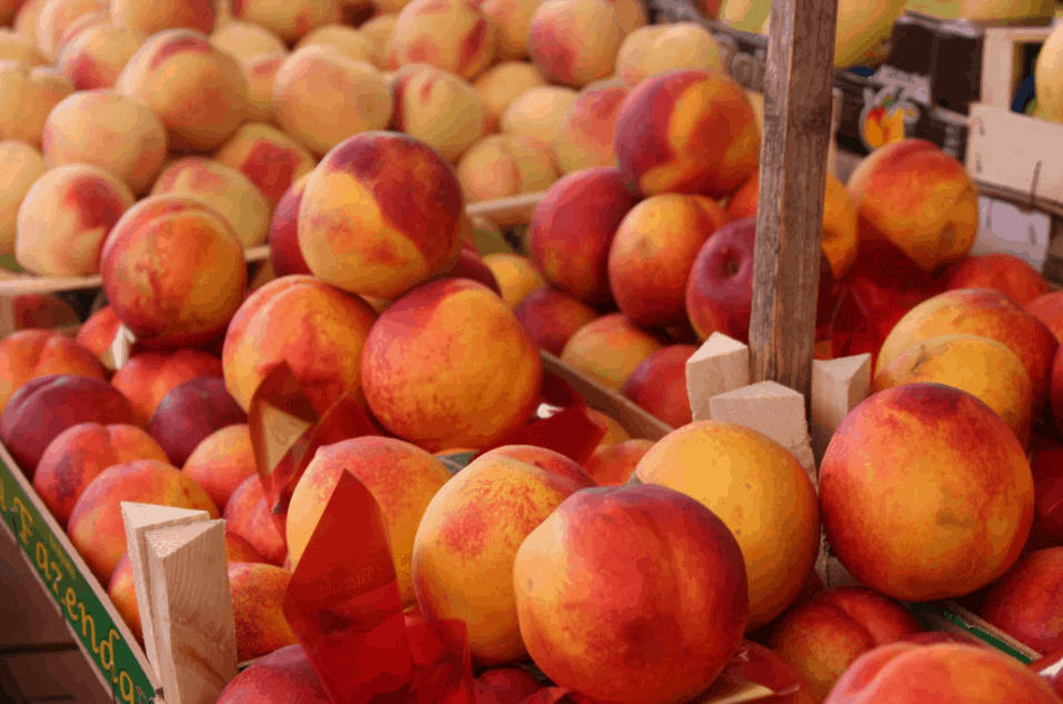A close up of peaches at a market