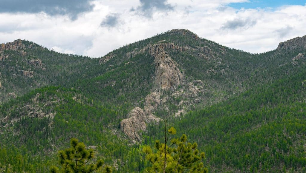 Mountain in Custer State Park