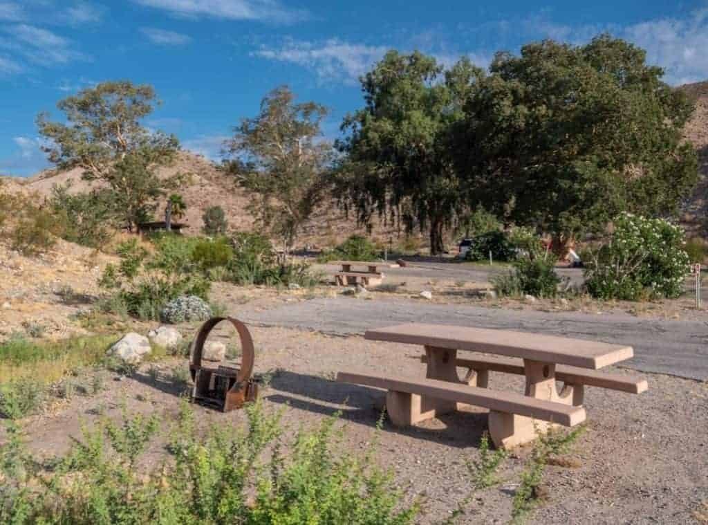 Campsites at the Cottonwood Cove Campground, Lake Mohave.