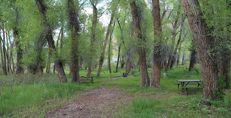 East Elk Creek Group Campsite, Blue Mesa Reservoir