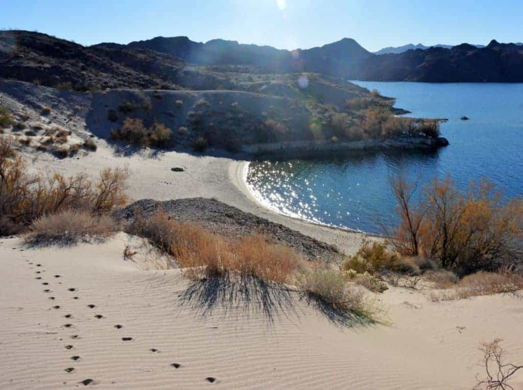 Footsteps in the sand along the Fisherman's Trail in Lake Mead NRA