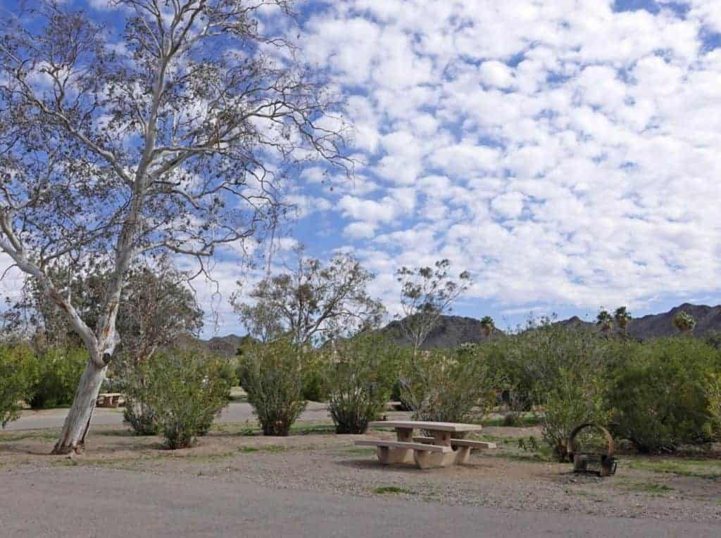 A campsite at Katherine Landing, Lake Mohave