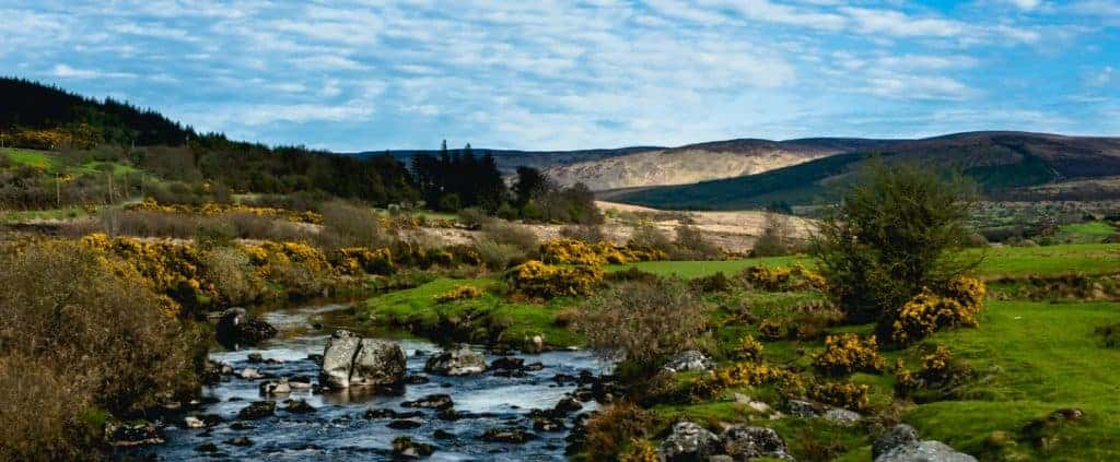 Stream in the Wicklow Mountains