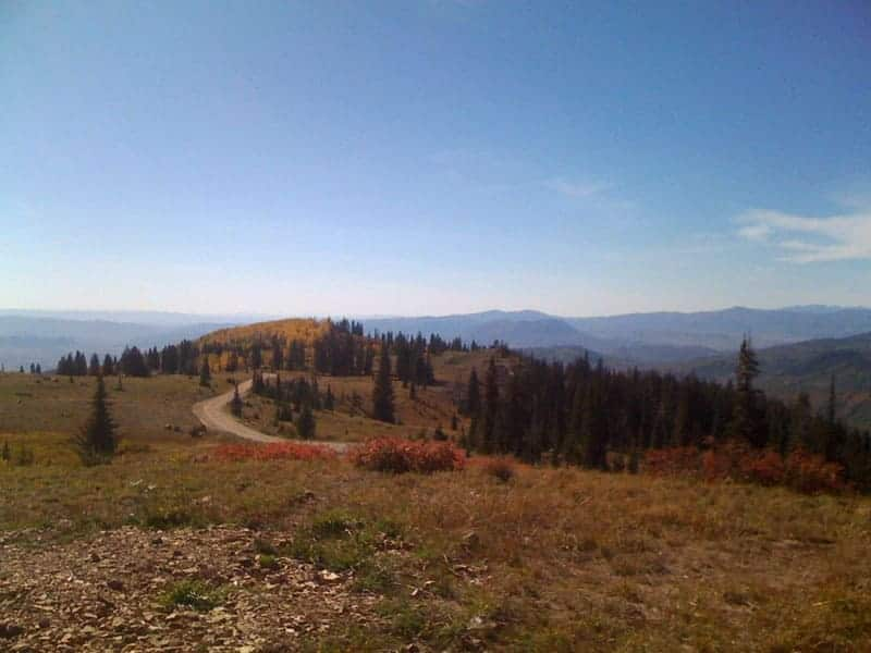 Dispersed campsite along Buffalo Pass near Steamboat Springs