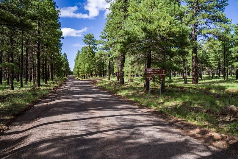 Dispersed camping near Flagstaff along Forest Service Road 171