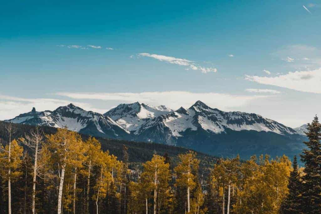 Yellow aspen trees in front of snowy mountains near Telluride