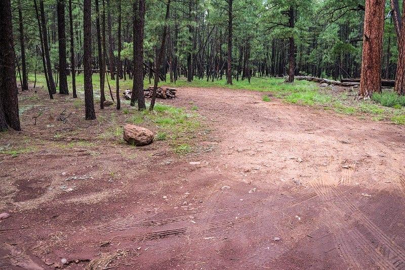 Wing Mountain dispersed campsite near Flagstaff